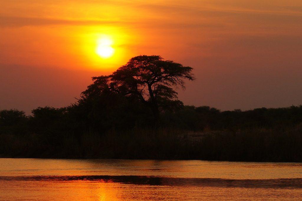 Okavango Delta in flood