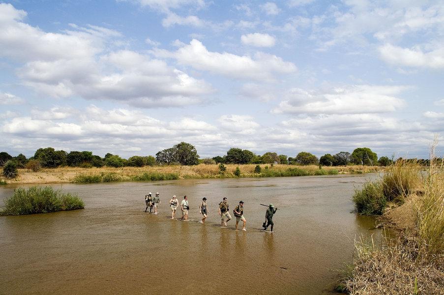 Experience a Walking Safari in Zambia