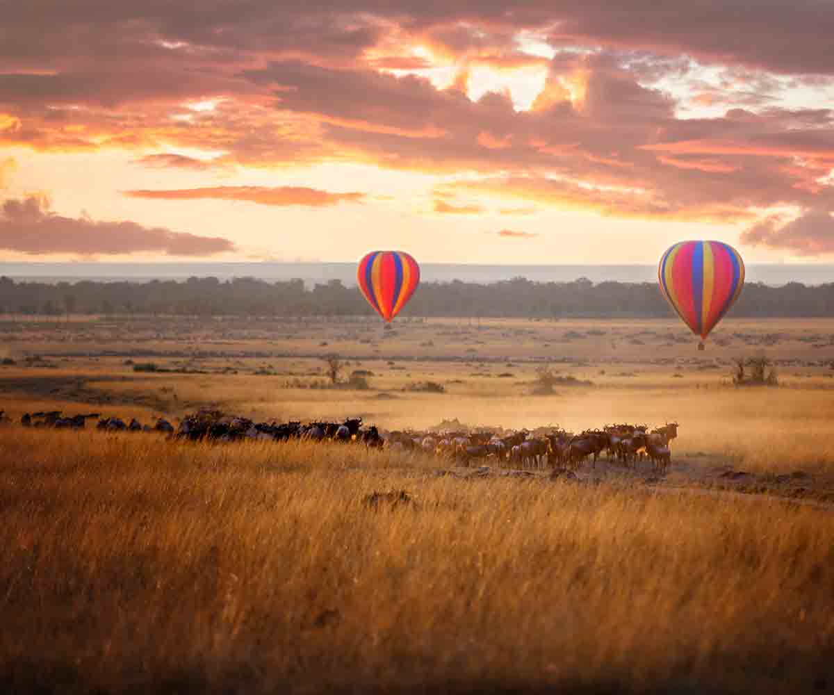 Our Planet with Africa Odyssey